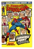 Amazing Spider-Man #121 NM-